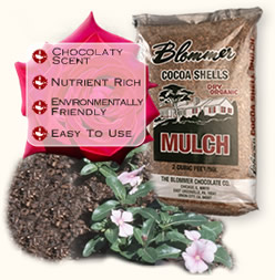 Blommer Cocoa Shell Mulch